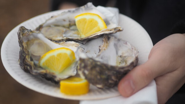 Oysters in Hobart